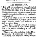 albgaz21june1799hessianfly